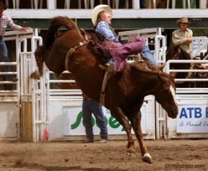 saddle bronc Sundre Rodeo