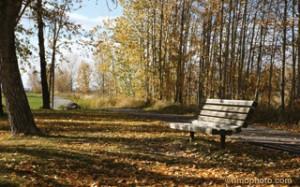 park bench Snake Hill Sundre